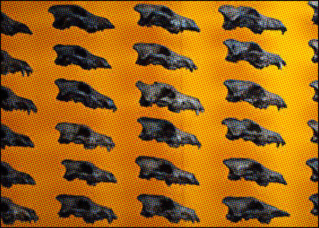 dire wolves wall at the Page Museum